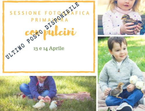 Servizio fotografico di famiglia con pulcini :: fotografo di famiglia